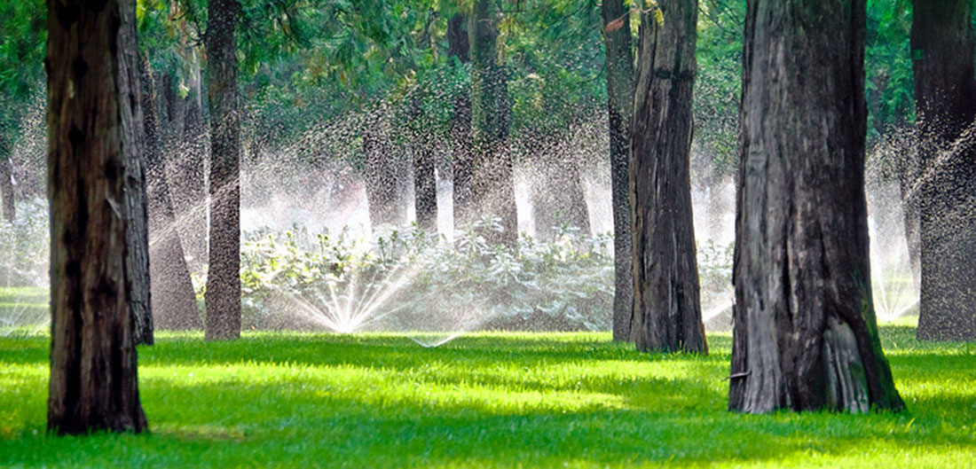 sprinklers in a wooded lawn