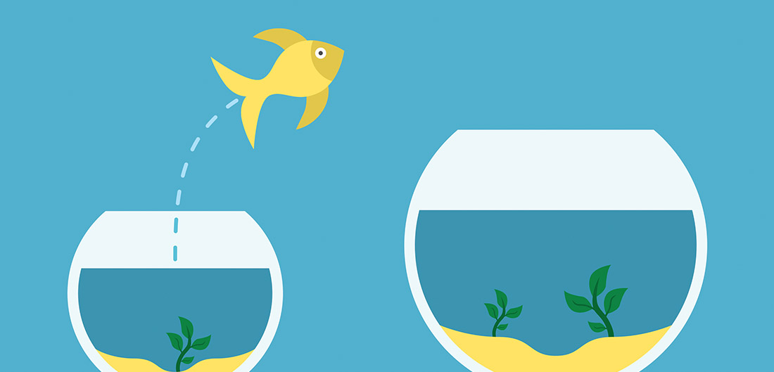 cartoon fish leaping from bowl to bowl