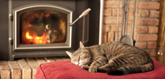 cat sleeps by wood stove