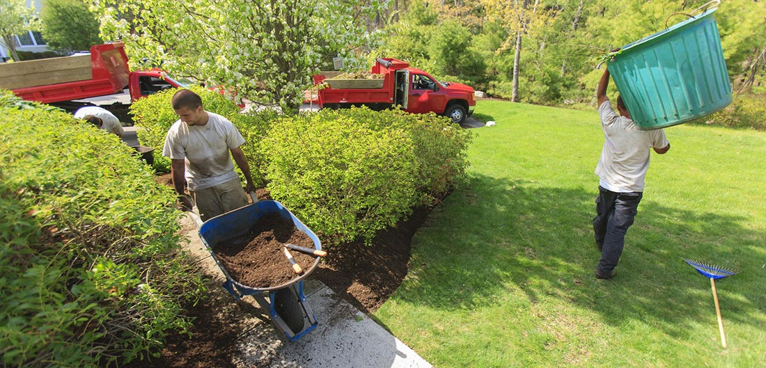 Questions to Ask Before You Hire a Landscaping Service   Erie Insurance
