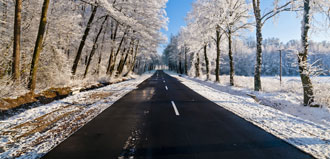 snowy, tree-lined country road stretches out to horizon