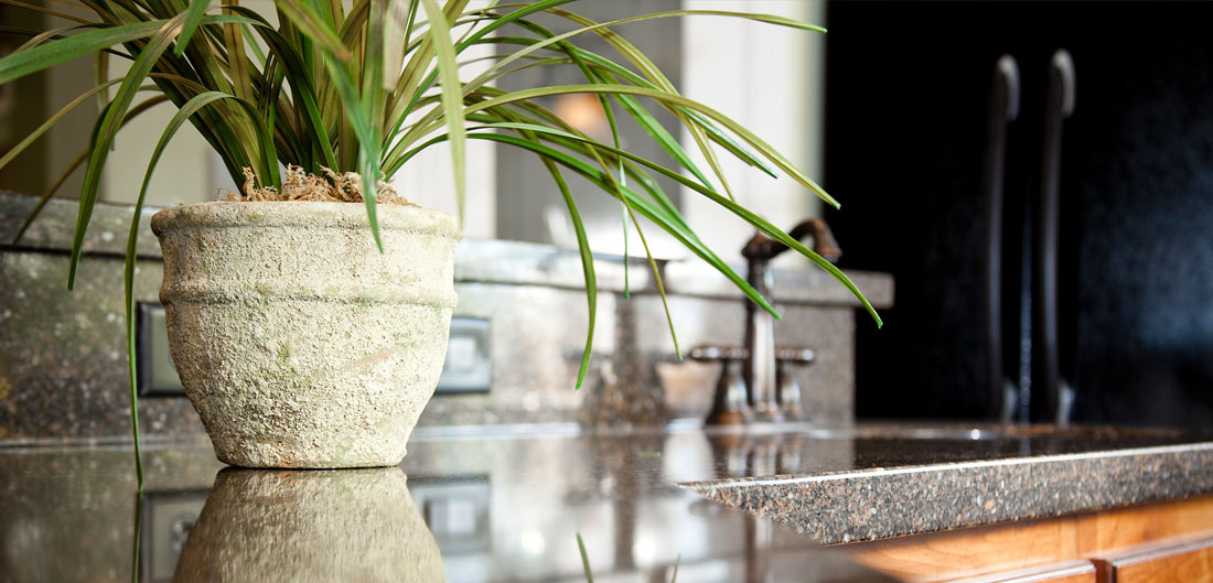 houseplant sits on polished granite kitchen countertop