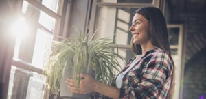 woman carries spider plant to windowsill