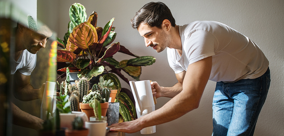 a young man, wearing a T-shirt and jeans, leans over to water his houseplants